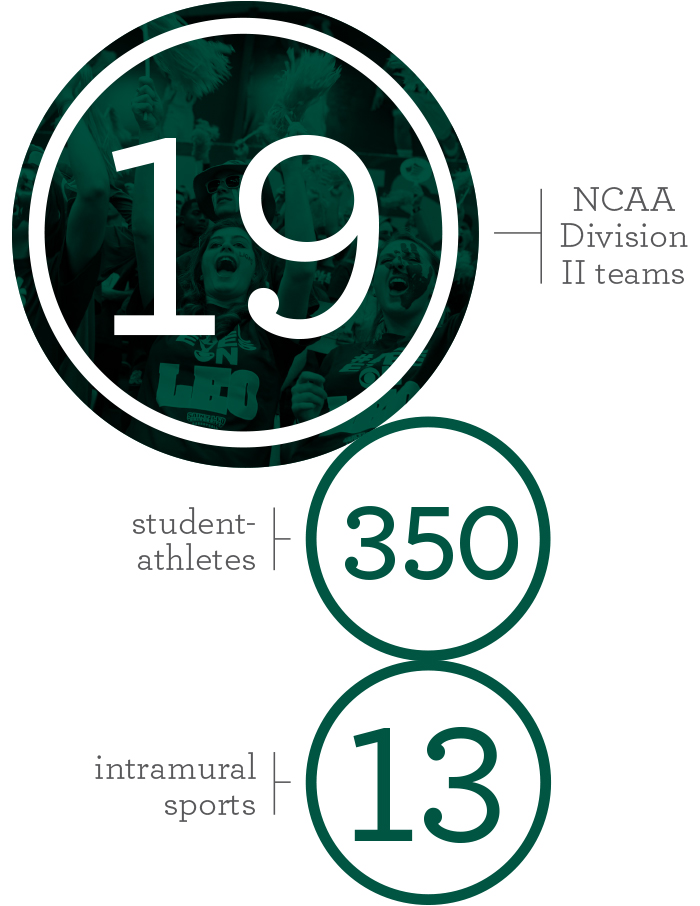 Athletic Excellence infographic